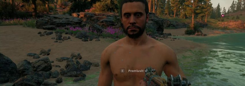 Far Cry New Dawn – Smolná série