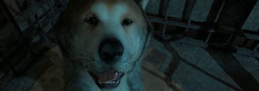 Far Cry New Dawn – Svět, kde člověk žere psy