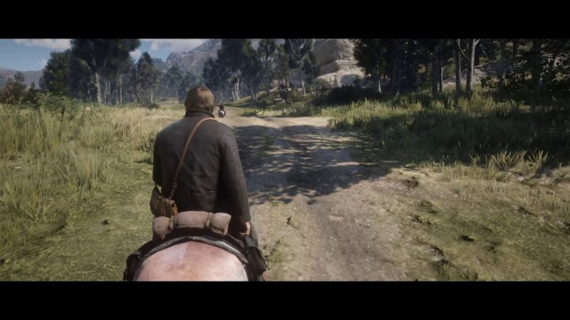 Red Dead Redemption 2 – 18